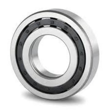 480 mm x 790 mm x 248 mm  Loyal NUP3196 cylindrical roller bearings